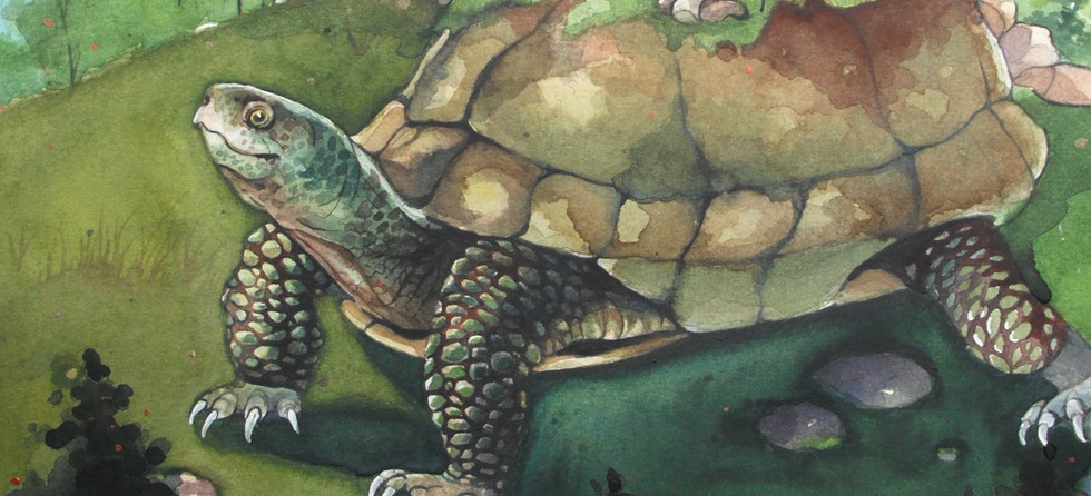 Kingdom_on_a_turtle_s_back crop.jpg