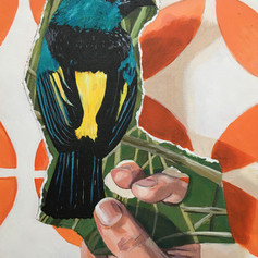 Bird in the Hand I