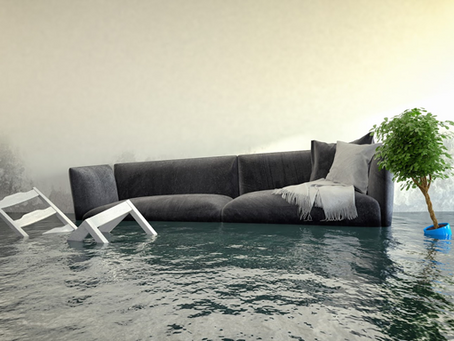 4 Terms to Know About Water Damage and Restoration