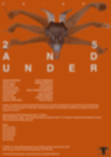 25 and under poster.jpg