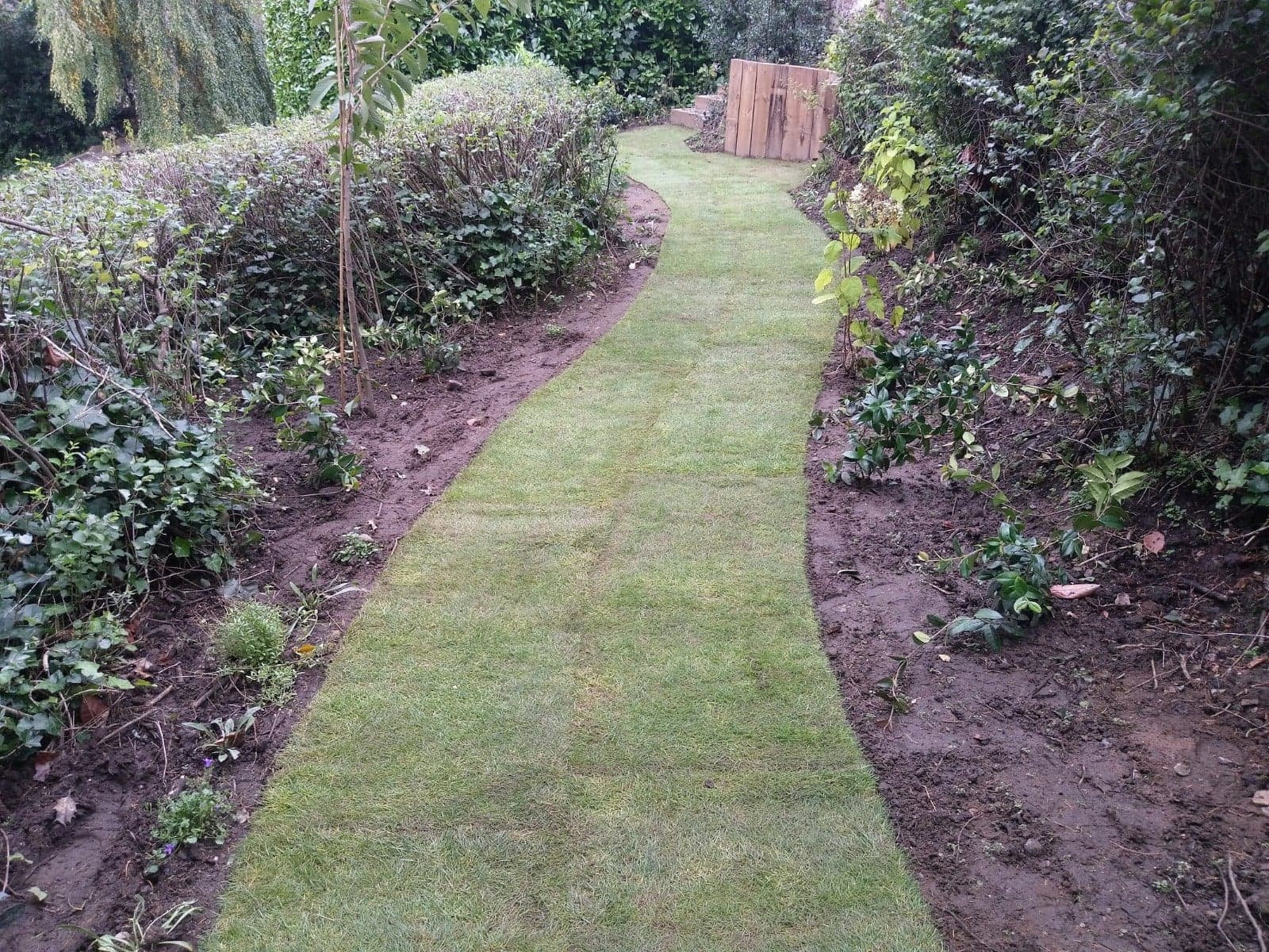 Tidy Up's and General Maintenance