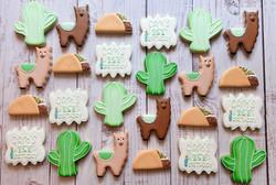 Llama Fiesta First Birthday Cookies