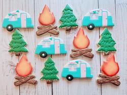 Camping Cookies