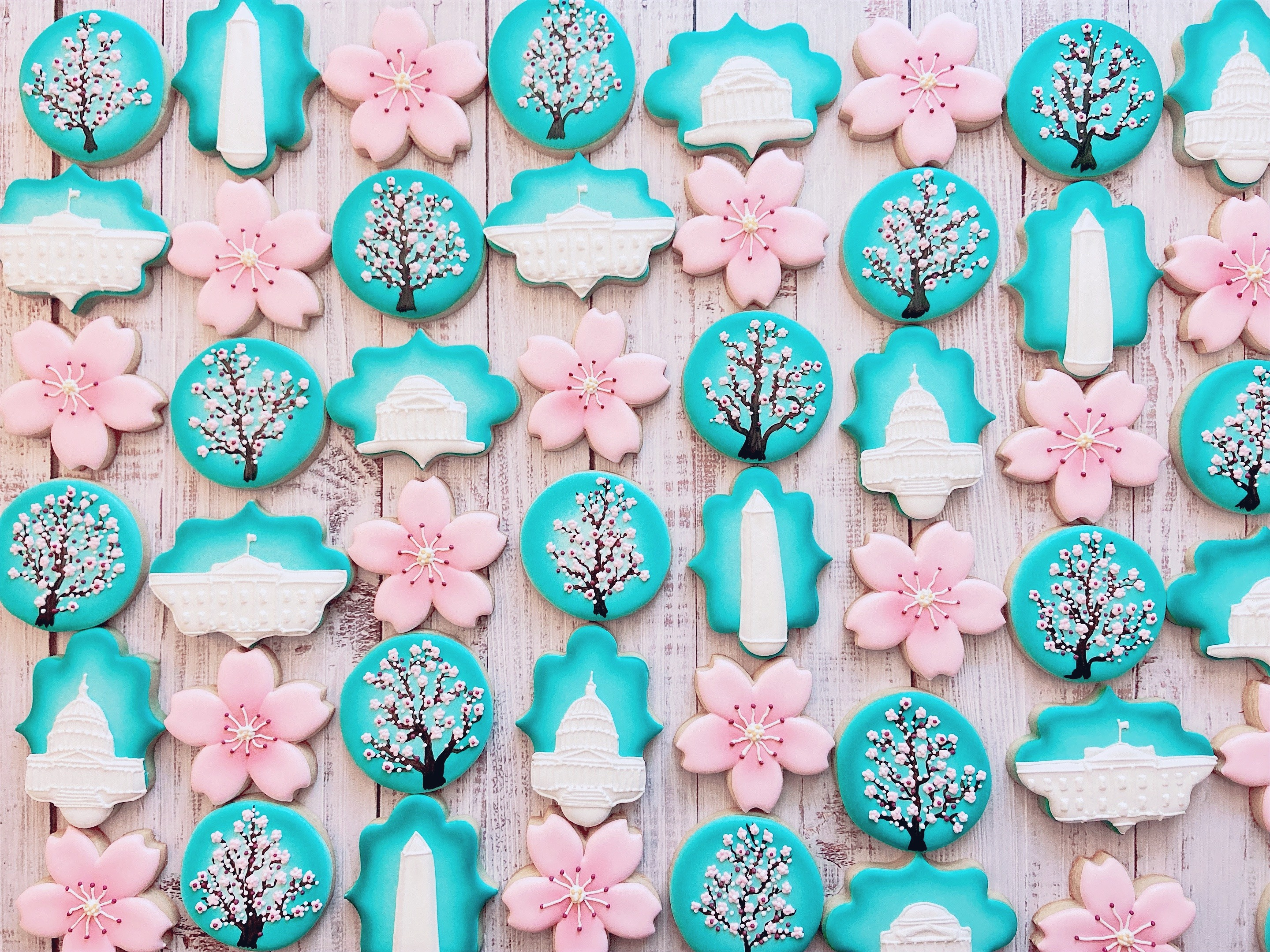Cherry Blossom Washington DC Cookies