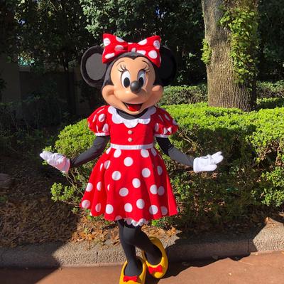 Walt Disney World recebe aprovação do governo para reabrir parques temáticos em 11 de julho