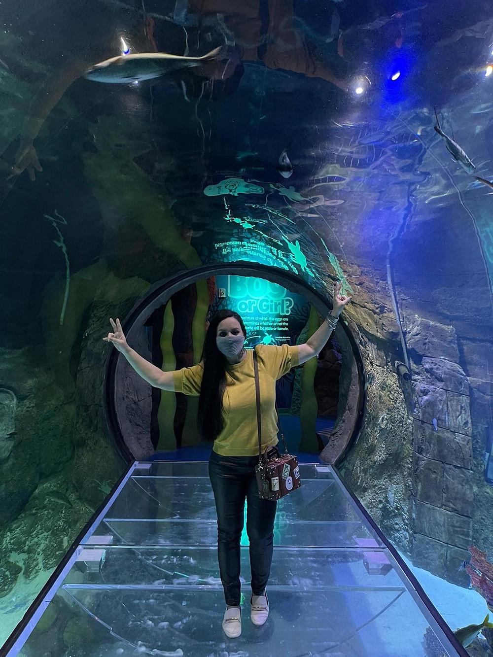sealife icon park