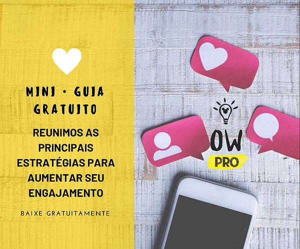 Engajamento OW PRO.JPG