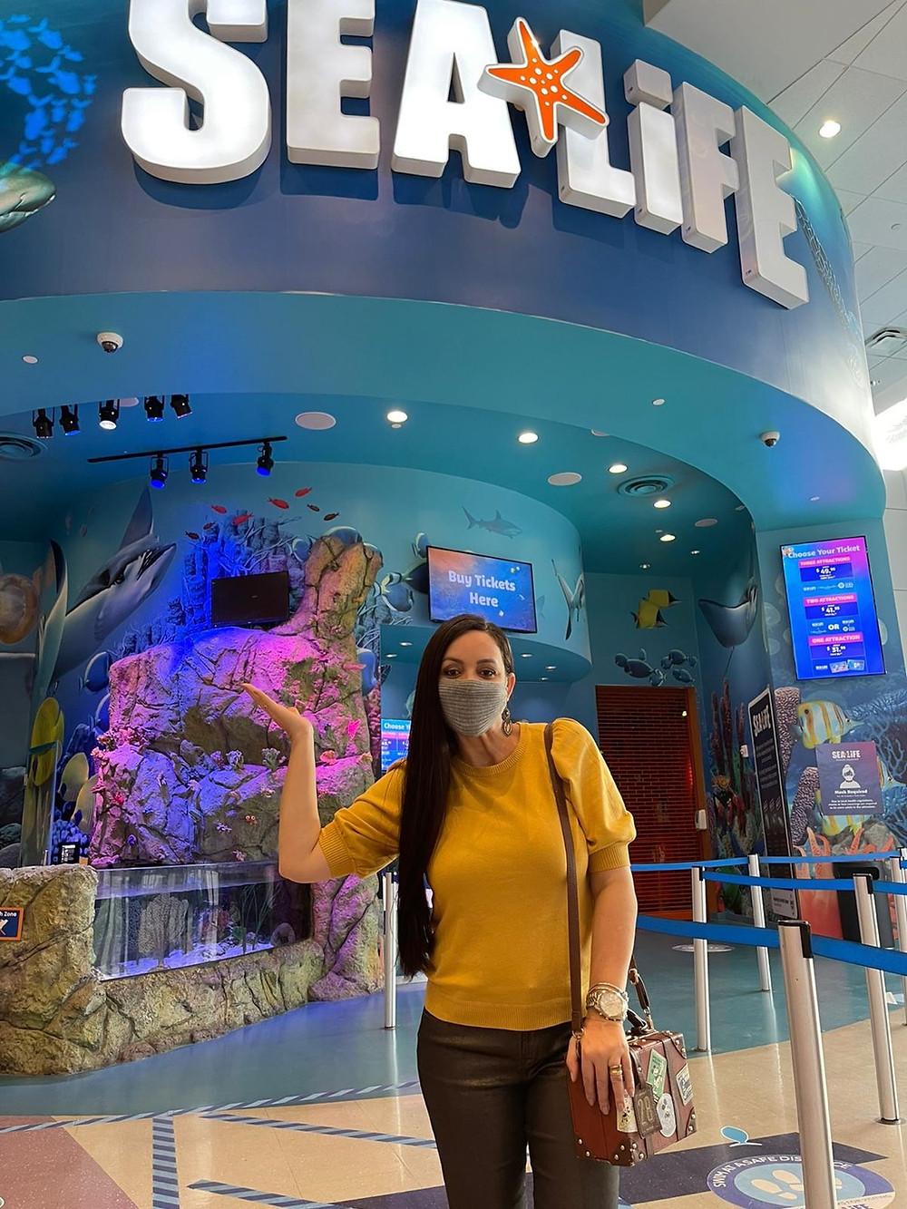 aquário sealife em Orlando