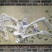 骸骨と鉄線