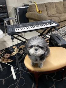 Ah Dad, enough of playing music, ok?