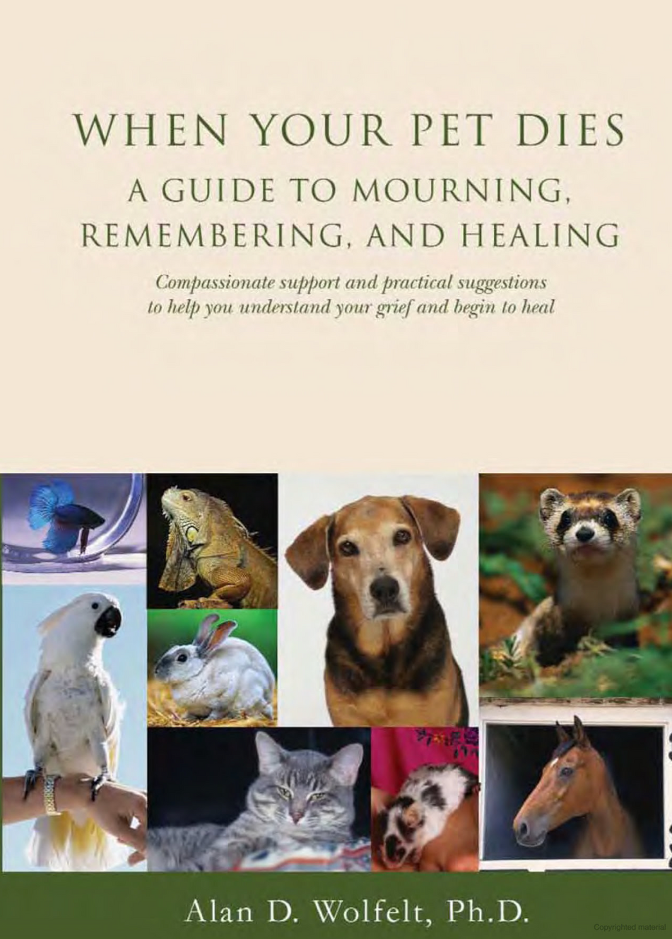 Recommended Reading - When Your Pet Dies