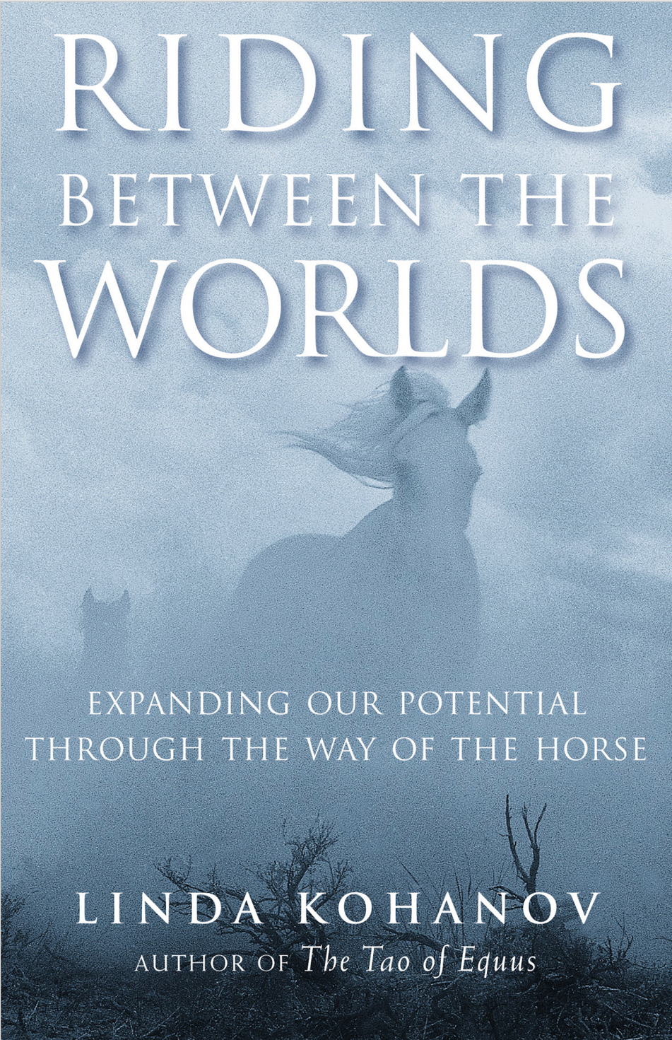 Recommended Reading: Riding Between the Worlds