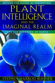 Recommended Reading - Plant Intelligence and the Imaginal Realm