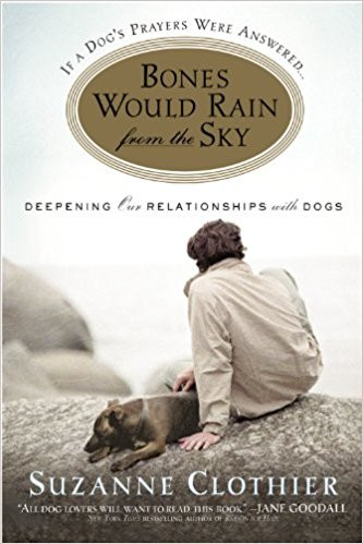 Recommended Reading: Bones Would Rain From the Sky