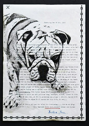 The Bulldog says Hi