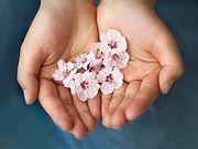 hand holding sakura.jpg