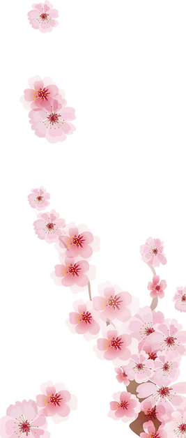 transparent blossoms 2.png