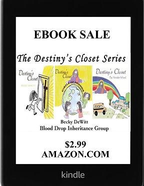 Destiny Closet Ebook Sale.jpg