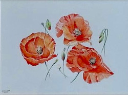 Remembrance by Marion Thomsett