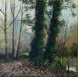 Terry Wood - Autumn Woodland Stotfield
