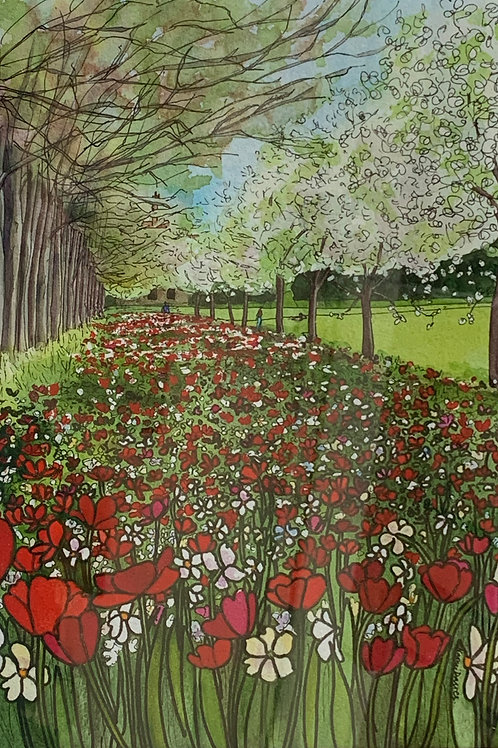 Naomi Davies - Tulips at Trinity