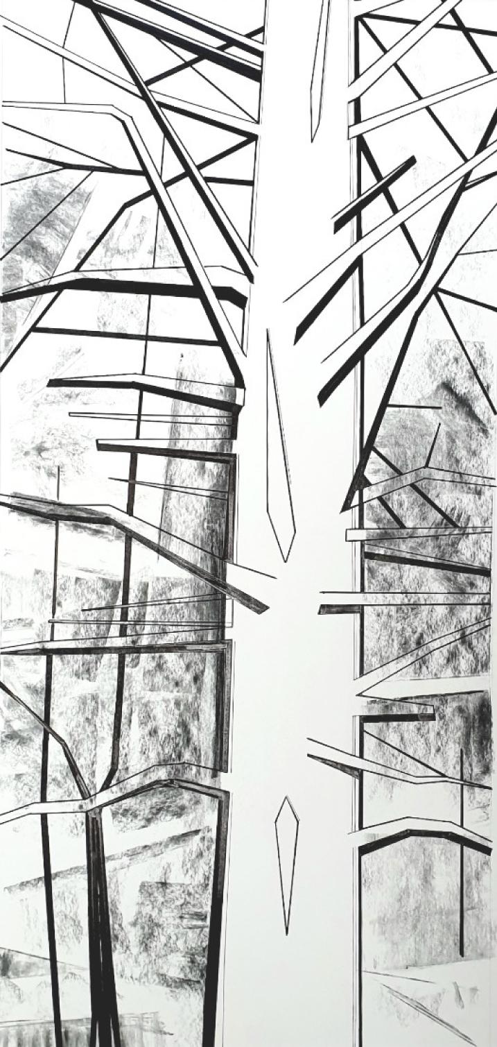 2019 Pine Canopy - Simon King-Underwood.