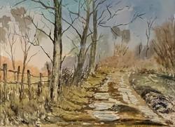 Mike Goreham - Country Lane