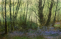 Terry Wood - Bluebell Wood