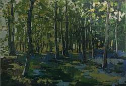Terry Wood - Woodland Walk