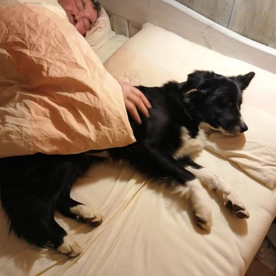 Mein Bett ;-)
