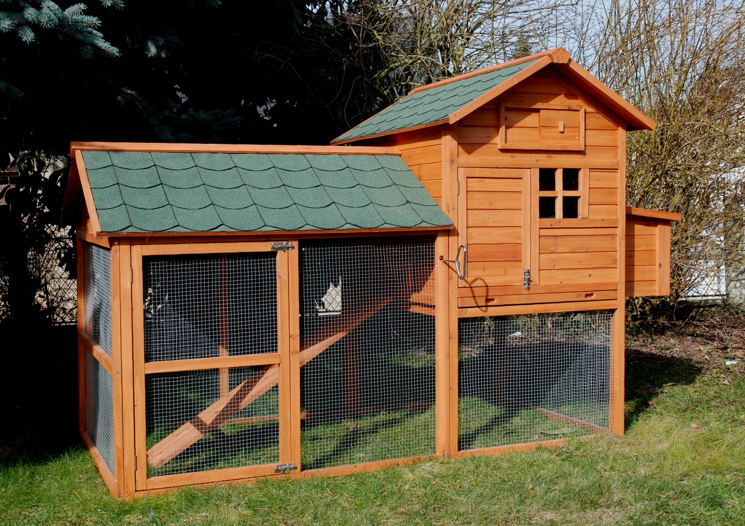 poulailler-6-poules-house.JPG