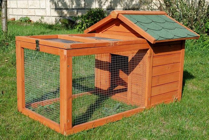 maison-lapin-avec-enclos