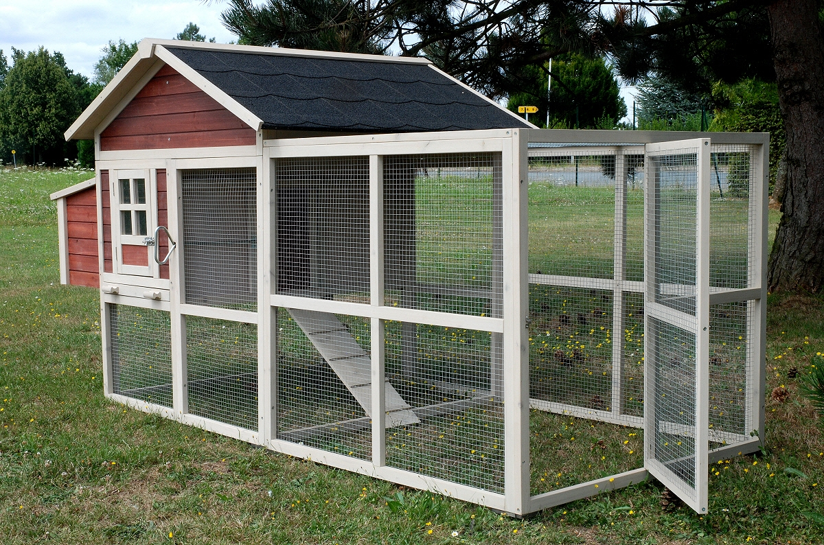 taille d 39 un poulailler pour 8 poules poulailler. Black Bedroom Furniture Sets. Home Design Ideas
