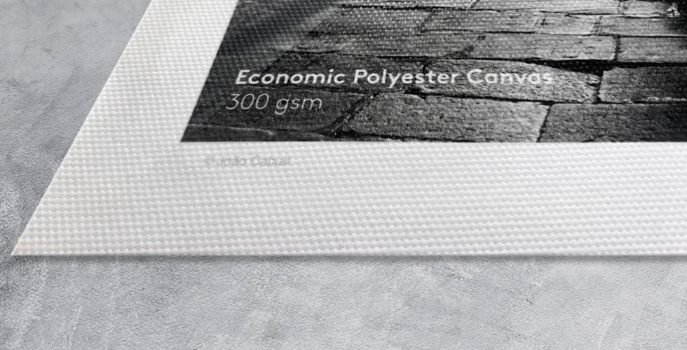 Economic Polyester Canvas