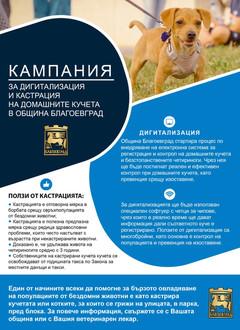 Община Благоевград стартира преброяване на кучета