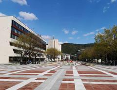 Благоевград ще опита да осигури временни жилища за медици в града