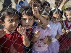 20 юни: Международен ден на бежанците