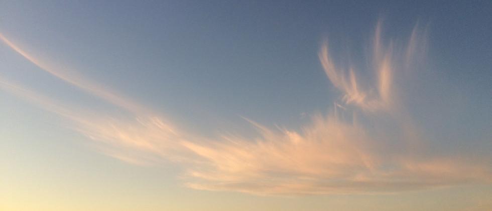 Healing Skies