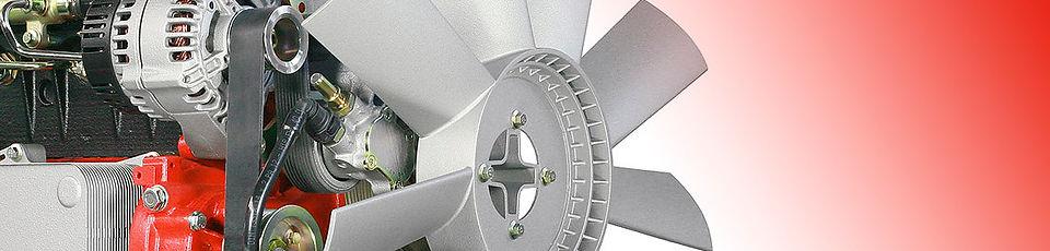 Ремонт двигателя Дойц