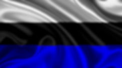 Tricolor_edited.jpg