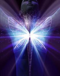 Higher Self Activation Program ~ 7 Attunements!