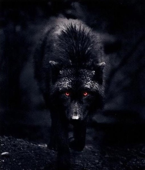 Sacred Black Dogs ~ Guardians of the Crossroads & Keepers of the Gates