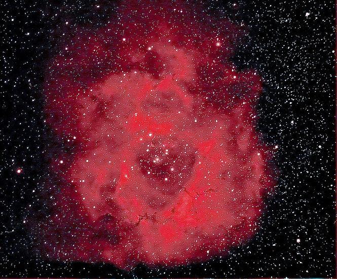 Celestial Rose Empowerment ~