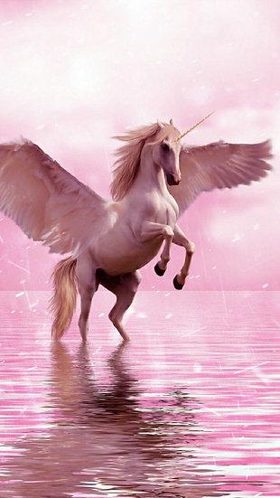 Pegasus Infusion ~