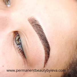 Omber / Powder Brows