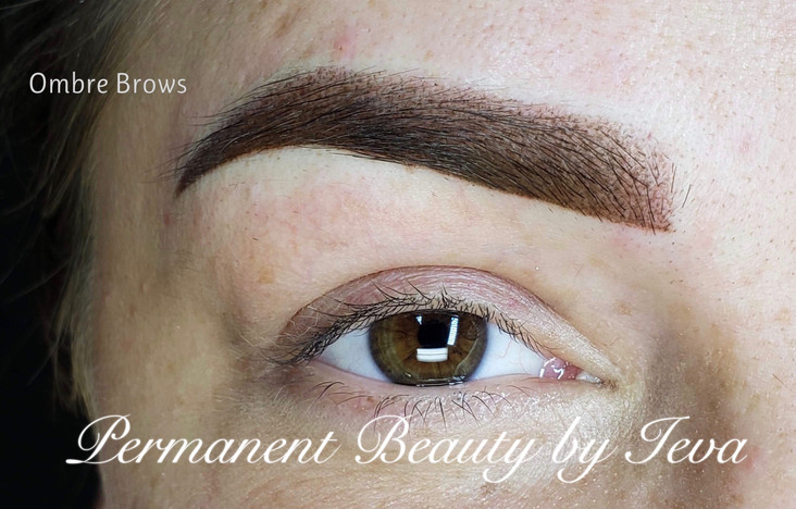 Stardust Ombre / Powder Brows