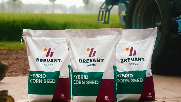 Brevant Seeds (Editor)