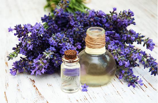 Lavender (ลาเวนเดอร์) ความสวยที่ช่วยบำรุงผิวได้แบบจัดเต็ม
