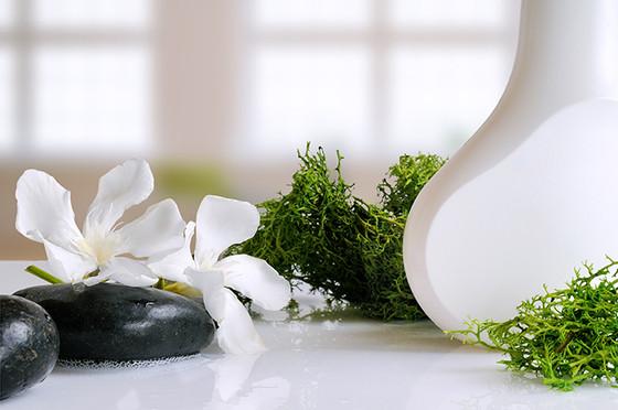 สาหร่ายทะเล (seaweed) อีกหนึ่งส่วนผสมสำคัญในผลิตภัณฑ์บำรุงผิว