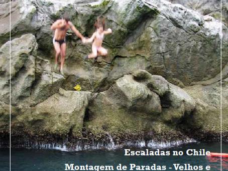 Noticias CEL - Novembro 2010